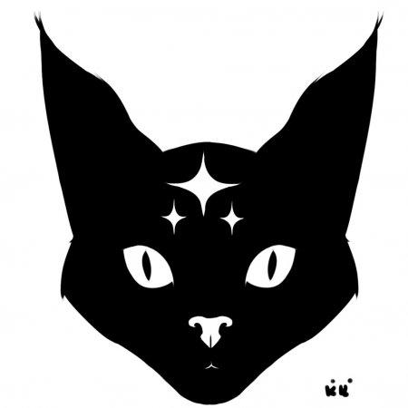 chat rencontre montreal gratuit